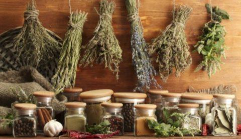 Лекарственные травы при неумелом использовании могут навредить