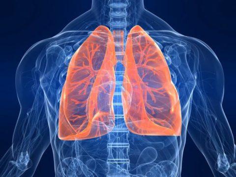 Сероводород поступает, преимущественно, через дыхательные пути