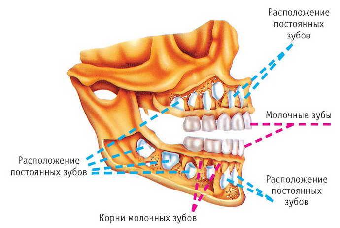 Изменение расположения зубов
