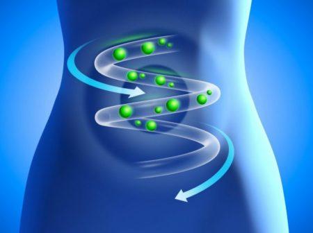 Как провести эвкалиптовую чистку от паразитов: подготовка к процедуре, ее плюсы и минусы