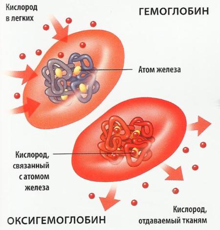 Основные цели профилактики выраженного сахарного диабета 2 типа, критерии диагностики расстройства, влияние образа жизни и общие рекомендации