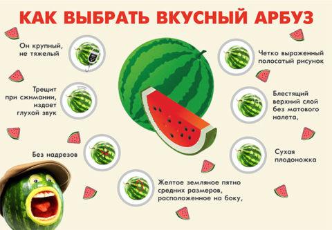 Рекомендации по выбору ягоды