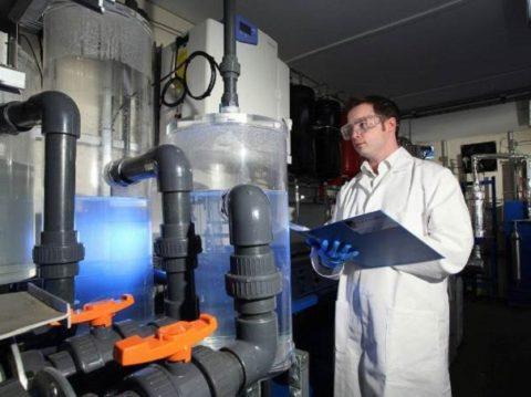 Хроническое отравление CO2 характерно для работников предприятий, где не соблюдаются нормативы по безопасности