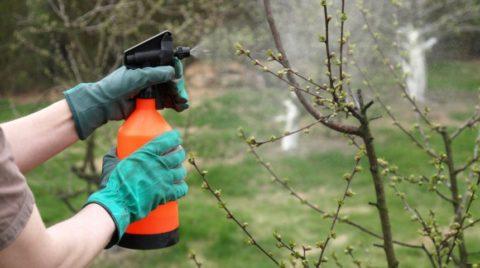 ФОС – помощники для работников огорода и сада.