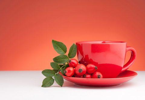 Отвар шиповника поможет вывести токсины и улучшить самочувствие.