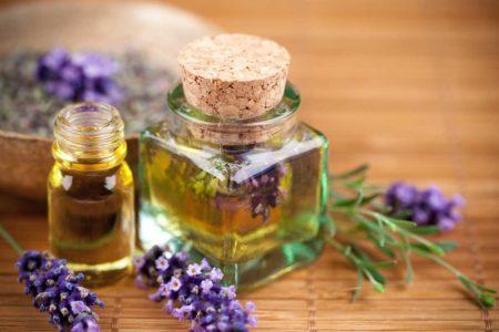 Эффективность эфирного масла от клещей, плюсы средства, методы использования и рецепты